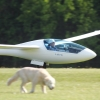 Hahnweide-Segelflugwettbewerb 2012