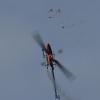 1dfh-5-eierfliegen-gechingen-139
