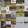 7. Eierfliegen