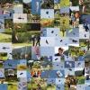 BaWü Airgames Oppenau 26.05.2012