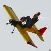 Böblinger Modellflugtag 27.09.2009