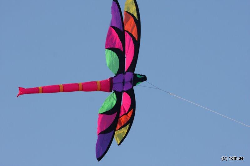 1dfh-4df-gra2010-150