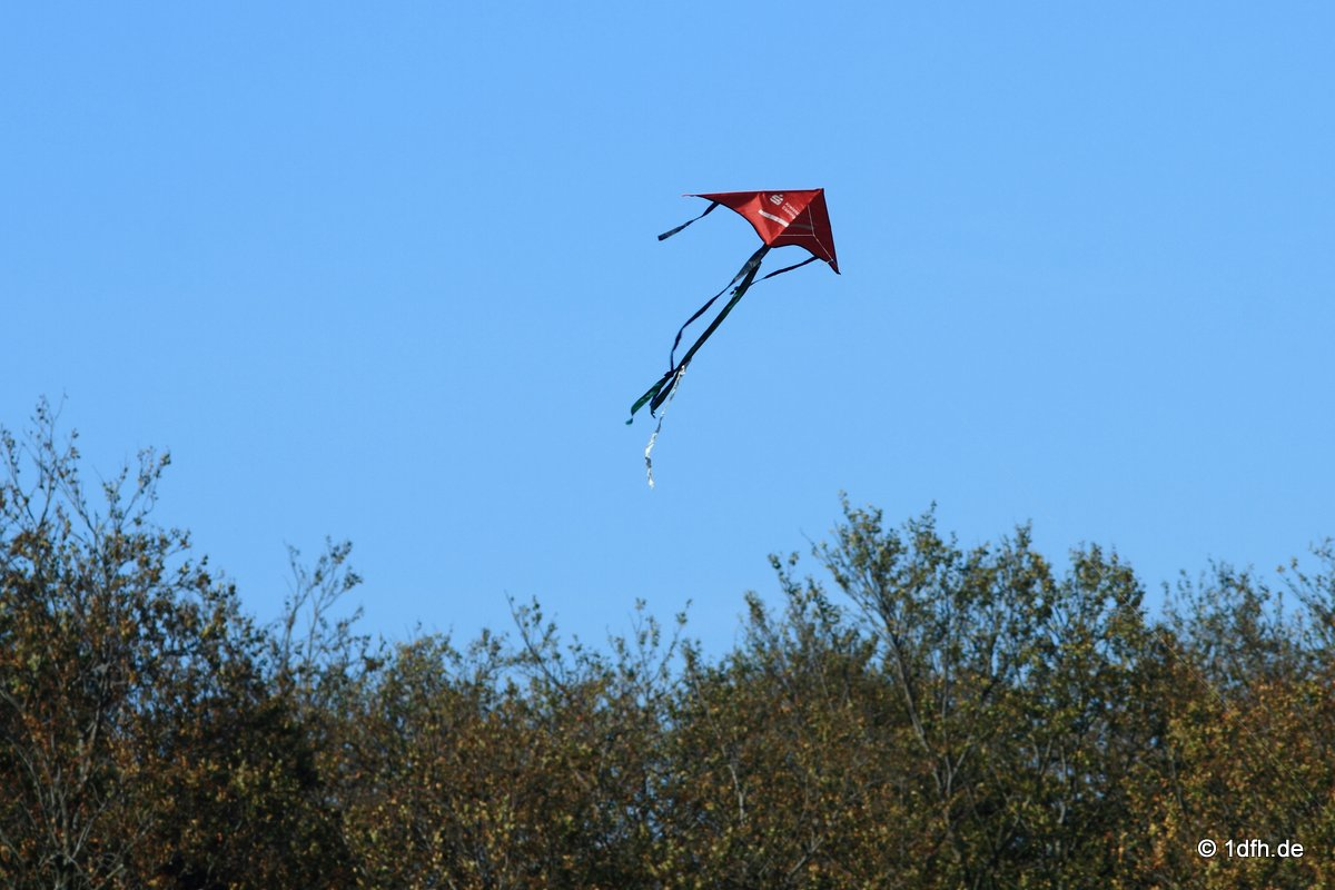 1dfh-drachenfest-huelben-2013-002