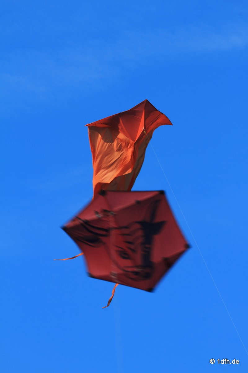 1dfh-drachenfest-huelben-2013-021