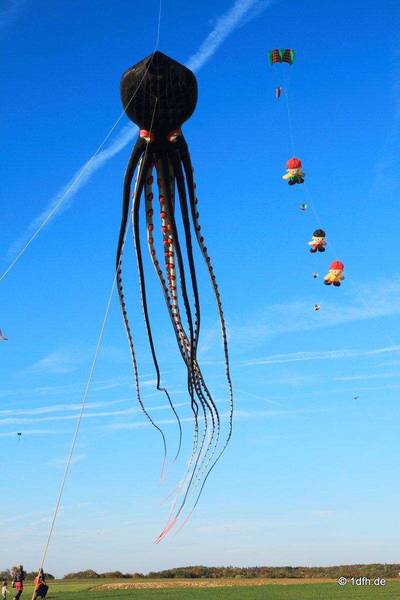 1dfh-drachenfest-huelben-2013-025
