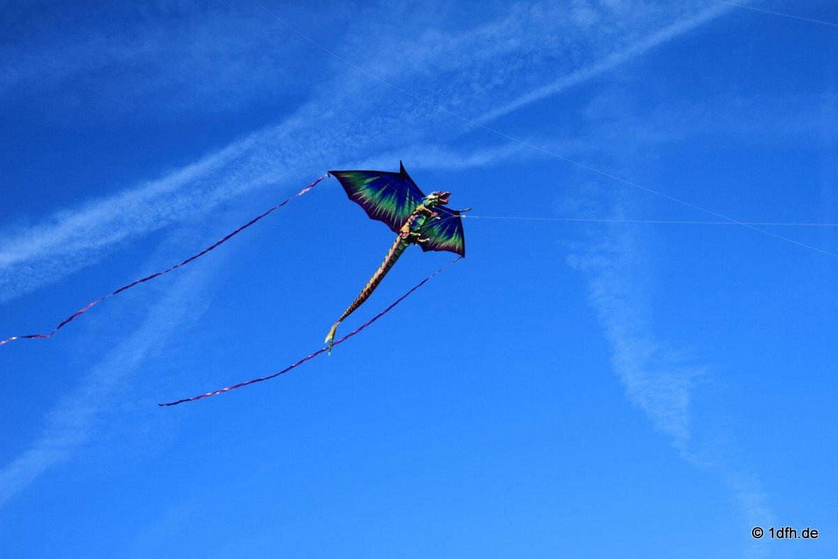 1dfh-drachenfest-huelben-2013-029