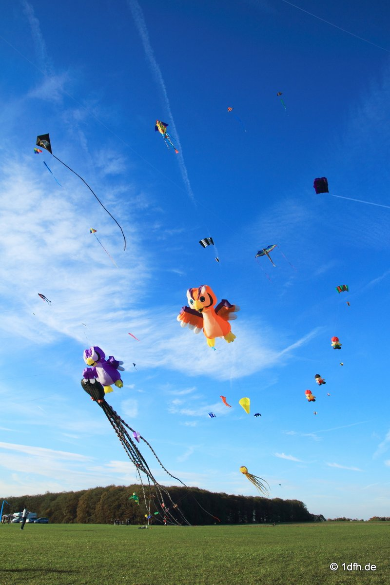 1dfh-drachenfest-huelben-2013-031