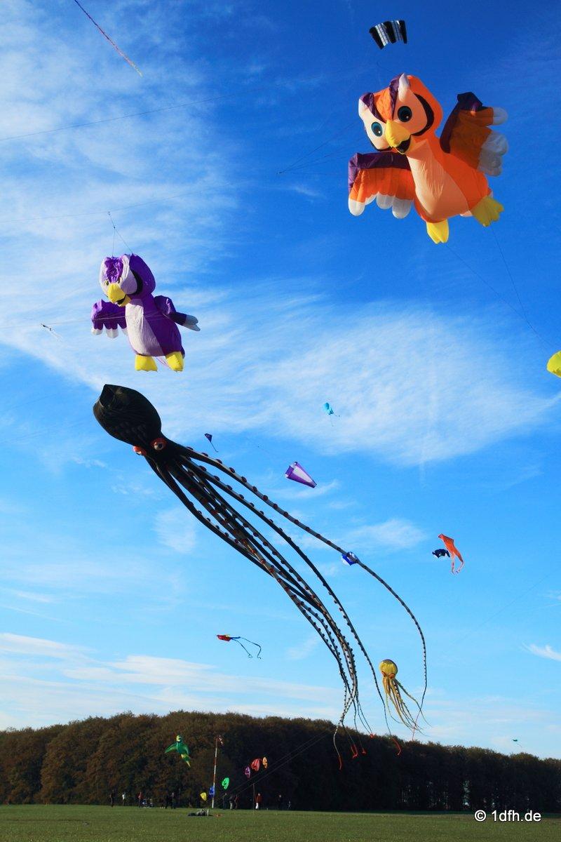 1dfh-drachenfest-huelben-2013-032