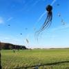 1dfh-drachenfest-huelben-2013-024