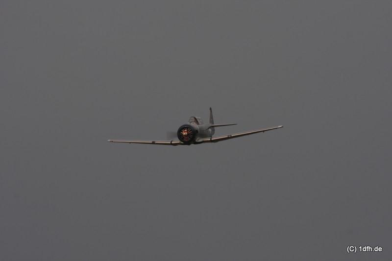 1dfh-1mai-09-eisberg_0208