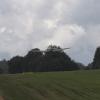 1dfh-grabenst-2009-1707-007