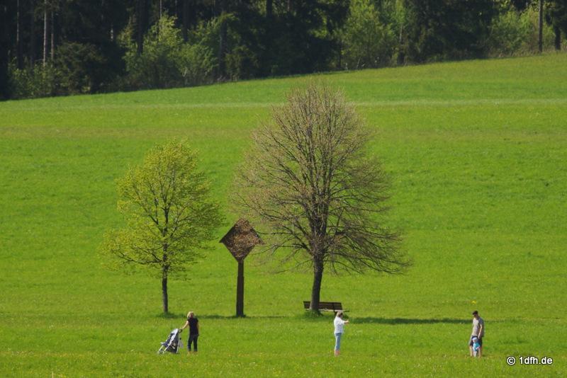 MFC Heuberg 24.05.2010