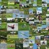 Modellflugschau des Sport- und Segelfliegerclubs Bad Waldsee-Reute e.V. 12.06.2011