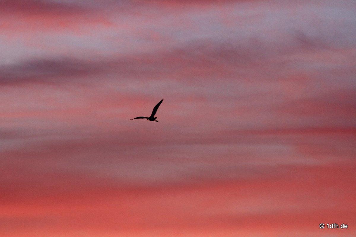 Himmel über Pfullingen 28.09.2016