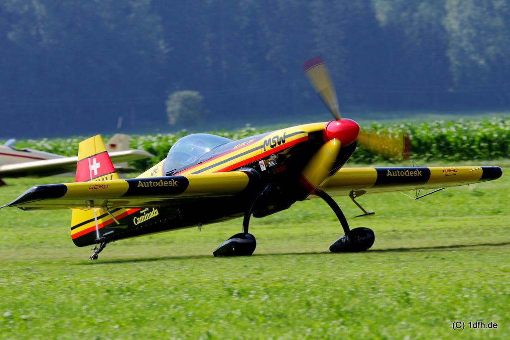 1dfh-tann2009-0015